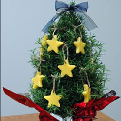 Beeswax Christmas Ornaments